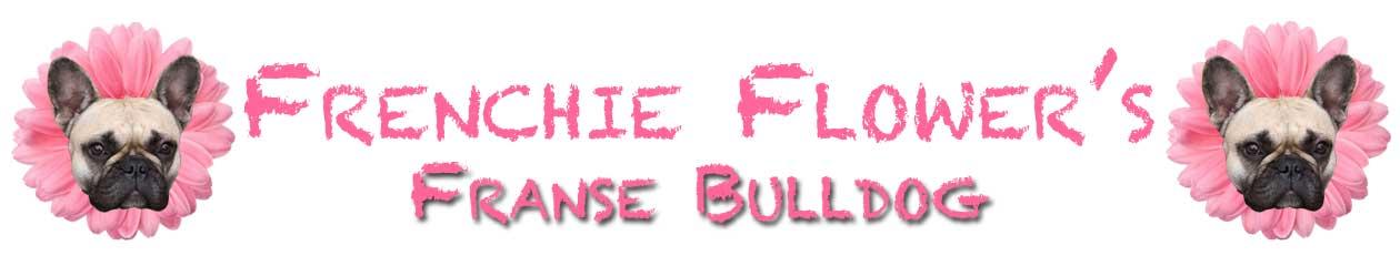 Frenchie Flower's Franse bulldog