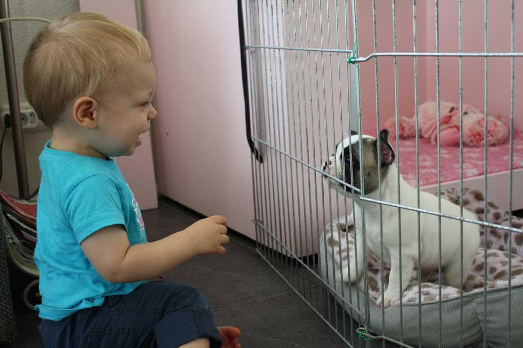 pups-kinderen-5